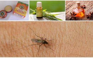 Aperçu des remèdes populaires contre les moustiques et les moucherons dans la nature