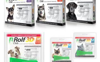 Drops Rolf Club 3D de puces pour chiens et chats