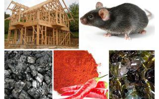 Protection de la maison cadre contre les souris