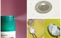 Comment se débarrasser des moucherons dans l'appartement