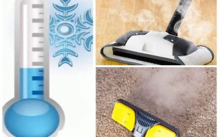 Comment se débarrasser des insecticides pour puces à tapis et des moyens improvisés