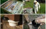 Comment se débarrasser des fourmis dans les remèdes populaires du rucher