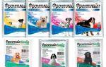 Manipulation des chiens contre les puces et les tiques