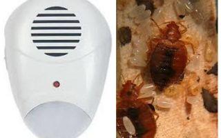 Repeller Pest Repeller des punaises