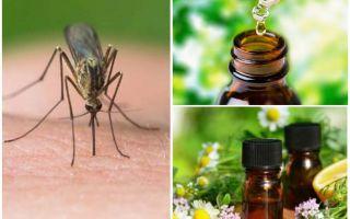 Huiles essentielles de moustiques