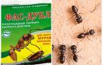 Signifie Fas-Double contre les fourmis