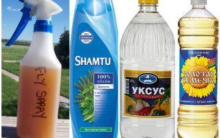 Shampoing anti-moustique à faire soi-même + vinaigre