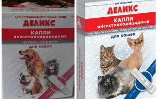Délicieuses gouttes de puces pour chiens et chats
