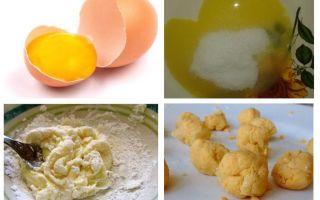 Recettes remèdes contre les blattes avec l'acide borique et l'œuf