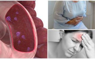 Comment déterminer la présence de Giardia dans le corps humain