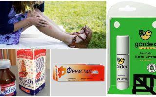 Que faire contre les piqûres de moustiques? Ne pique pas