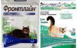 Gouttes aux puces Frontline pour les chats