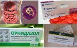 Les meilleurs médicaments pour le traitement de Giardia chez les adultes