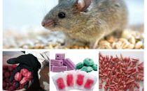 Poison pour rats et souris