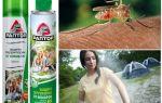 Protéger le territoire des moustiques Raptor