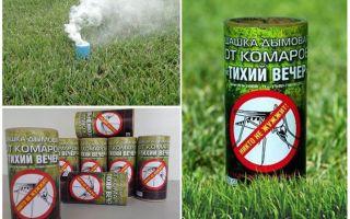 Les meilleurs contrôleurs de fumée pour les moustiques
