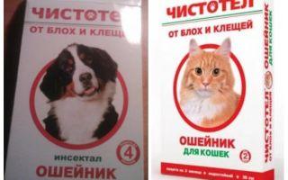 Collier de chili aux puces pour chiens et chats