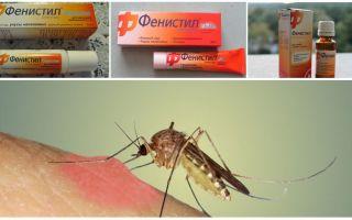 Gel Fenistil contre les piqûres de moustiques: instructions, critiques et analogues