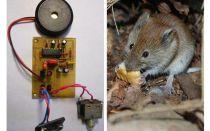 Rats et souris à répulsion ultrasonique avec leurs propres mains
