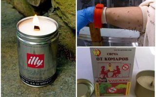 Bougies anti-moustiques