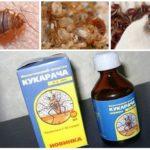 Cucaracha remède contre les punaises de lit-1
