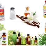 Remèdes populaires contre les punaises