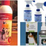 Sprays contre les puces chez les chats