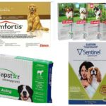 Comprimés aux puces pour chiens
