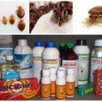 Remèdes contre les punaises