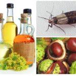 Châtaignes et huiles essentielles