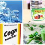 Remèdes populaires contre les piqûres de moucherons