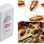 Pest-Reject-1