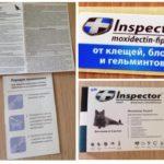 Drops Inspector-1