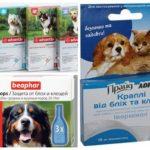 Gouttes aux puces pour chiens