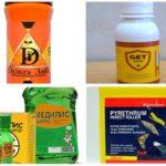 Remèdes contre les puces