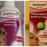 Shampooing Paranit