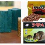Produits chimiques de rats