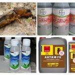 Produits insecticides du Medvedka
