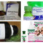 Médicaments de pédiculose