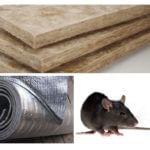 Isolants qui rongent les rats