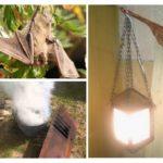 Comment se débarrasser des chauves-souris à la maison