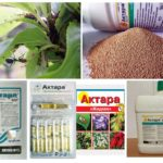 Formes de libération du médicament Aktara