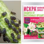 Pesticide Spark Double Effet