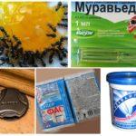 Produits chimiques insectes
