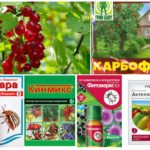 Produits chimiques contre les parasites
