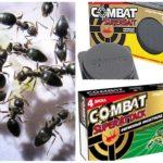 Combat de pièges à insectes