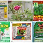 Produits chimiques toxiques pour la protection des plantes