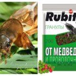 Couper les granules de Rofatoks de Medvedka