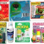 Remèdes contre les parasites