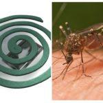 Bobines de moustiques